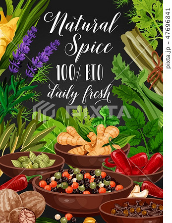 Spice and herb, cooking seasonings and condiments 47696841