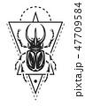 ビートル 甲虫 カブト虫のイラスト 47709584