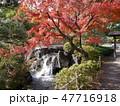 府中の森公園の紅葉 47716918
