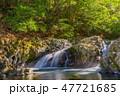 滑沢渓谷 渓流 川の写真 47721685