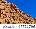 林業 木材 材木の写真 47721796