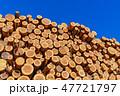 林業 木材 材木の写真 47721797