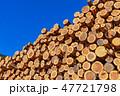 林業 木材 材木の写真 47721798