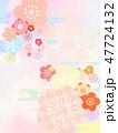 和柄 背景 春のイラスト 47724132