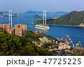 鍋冠山 客船 入港の写真 47725225