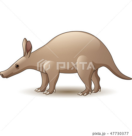 Cartoon Aardvark isolated on white background 47730377
