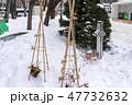 雪囲い 大通公園 47732632
