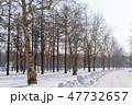 晴れの林道 北海道 47732657