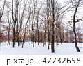 晴れの林道 北海道 47732658