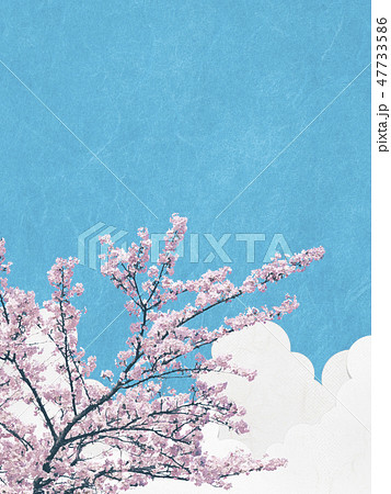 和風背景素材-和紙の風合い-桜-ソメイヨシノ-青空-雲 47733586