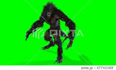 werewolf 3d render 47743389