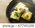 揚げ出し豆腐12 47745106