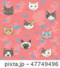 猫 顔 柄のイラスト 47749496