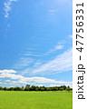 青空 夏 公園の写真 47756331