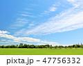 青空 夏 公園の写真 47756332