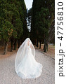 the bride in a wedding dress with a veil is walking along the cypress alley 47756810