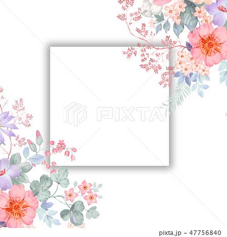 花 フラワー お花 47756840