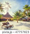 ビーチ 椰子の木 傘の写真 47757823