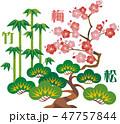 松竹梅 松 縁起物のイラスト 47757844
