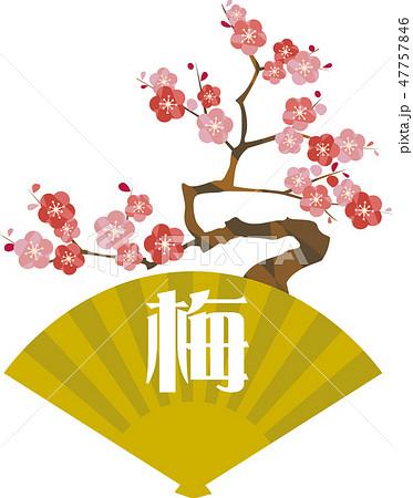 松竹梅の梅 47757846