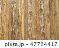 Wood Texture Background 47764417