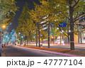 御堂筋 イルミネーション 夜の写真 47777104