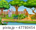 動物 野生動物 動物園のイラスト 47780454