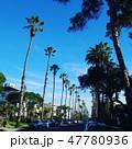 カリフォルニア 47780936