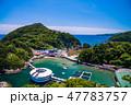 【静岡県下田市】下田公園から眺める下田海中水族館 47783757