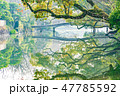 柳川 水郷 柳川市の写真 47785592