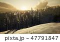 景色 風景 森林のイラスト 47791847