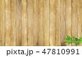 背景-壁-木目-新緑-葉-枝-てんとう虫-春-夏 47810991