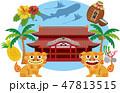 沖縄 47813515