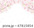 桜 花 花びらのイラスト 47815854