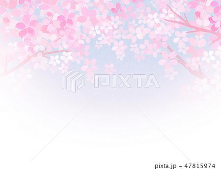 桜 和紙風 テクスチャー 47815974