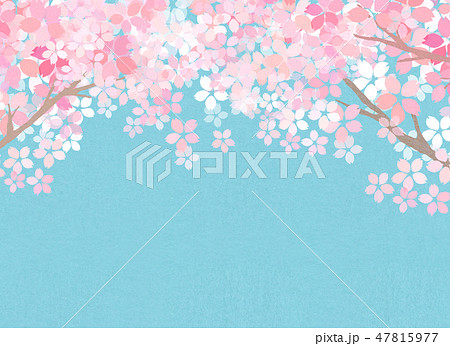 桜 和紙風 テクスチャー 47815977