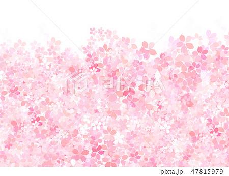 桜 和紙風 テクスチャー 47815979