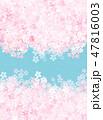 桜 和紙風 フレームのイラスト 47816003