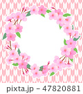 桜 フレーム 春のイラスト 47820881
