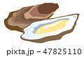 牡蠣 食べ物 白バックのイラスト 47825110