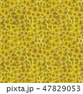 Durian Skin Seamless Background. King of Tropical Fruits Pattern. 47829053