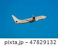 飛行機 飛行 航空機の写真 47829132