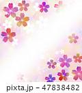 桜 桜花 花のイラスト 47838482