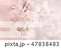 桜 桜花 花のイラスト 47838483