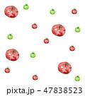 トマト ミニトマト 野菜のイラスト 47838523