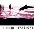 上越市立水族博物館 うみがたり 47841974