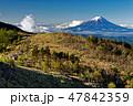 山 風景 富士山の写真 47842359