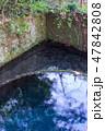 水 綺麗 背景の写真 47842808