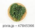 野菜 食材 ケールの写真 47845366