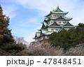 梅と名古屋城天守閣 47848451